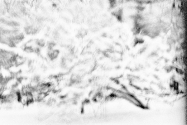 arbre-neige-def