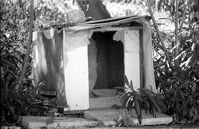 pireas shelter (website)